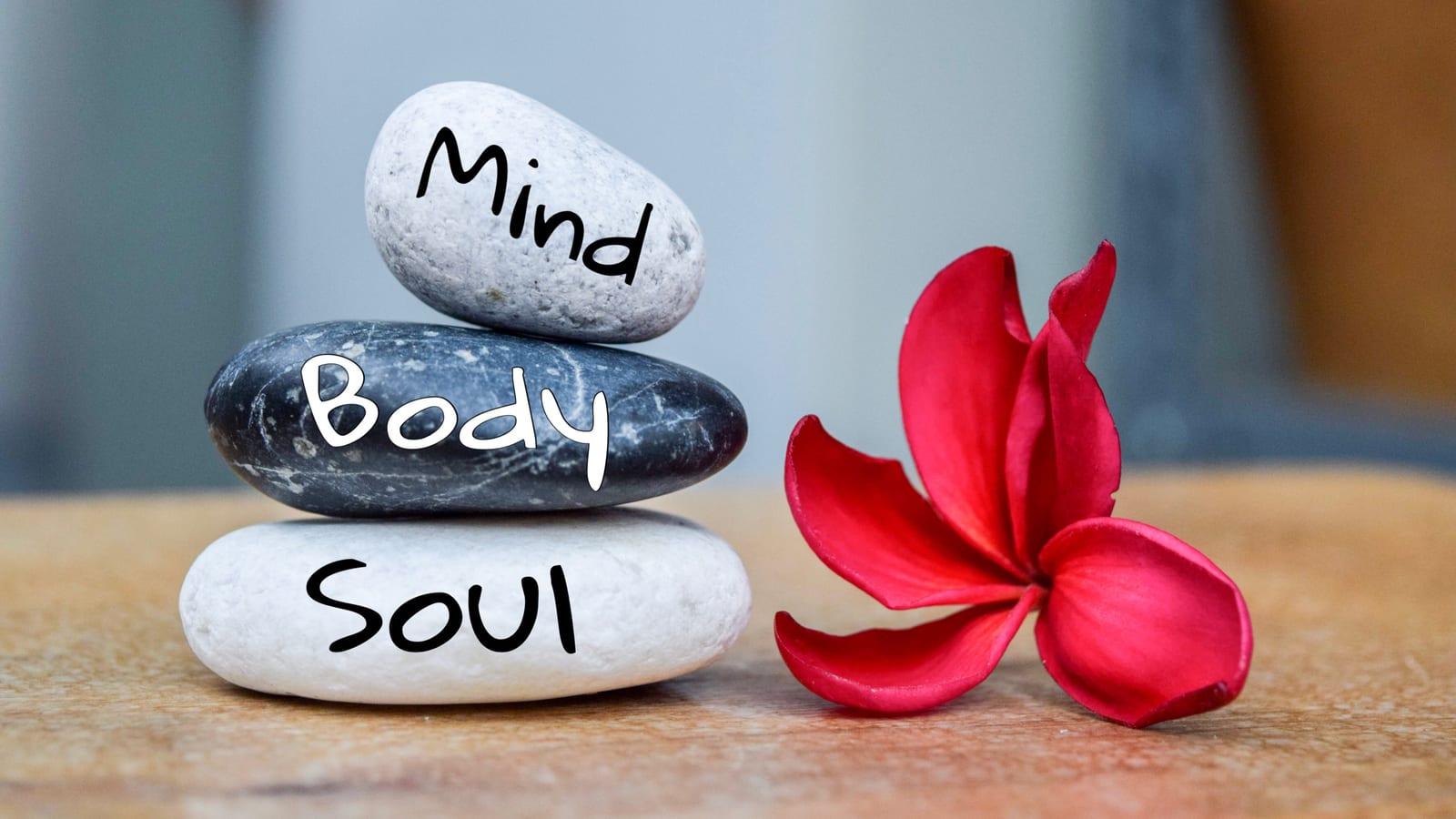 Rocks reading Mind, Body, Soul